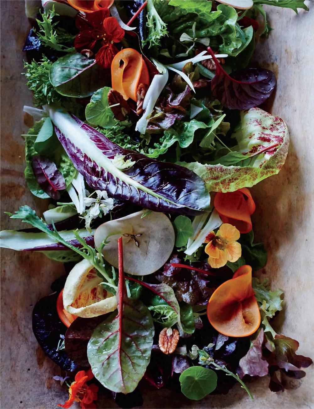 Salads Food Wine Annual Cookbook 2016 Dana Cowin