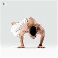 arm balances  2100 asanas the complete yoga poses 2015